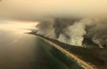 """ส่งใจไป """"ออสเตรเลีย"""" เผชิญไฟป่าครั้งที่รุนแรงที่สุด คร่าชีวิตสัตว์ป่าแล้วกว่า 500 ล้านตัว"""
